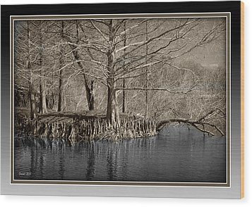 Lake Alice Wood Print