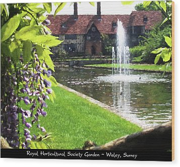 Lake And Fountain At Rhs Wisley Wood Print by Jayne Wilson