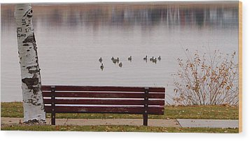 Lake Bench Wood Print by James BO  Insogna