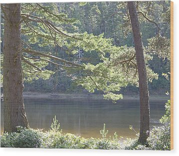 Wood Print featuring the photograph Lake Chamberlin by Angi Parks