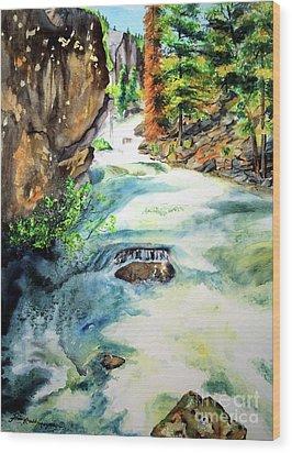 Lake Como Waterfall Wood Print by Tracy Rose Moyers