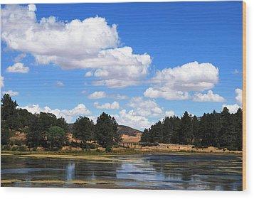 Lake Cuyamac Landscape And Clouds Wood Print