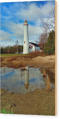 Lake Huron Lighthouse Wood Print by Michael Rucker