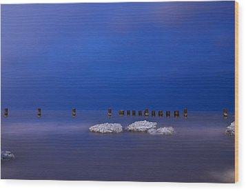 Lake Ice Chicago Wood Print by Steve Gadomski