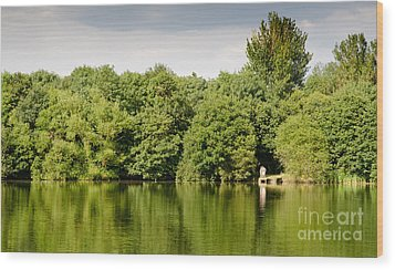 Lake Jetty Dinton Pastures Lakes And Nature Reserve Shore Line Wood Print by Andy Smy