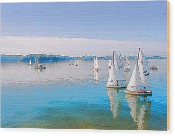 Lake Lanier Wood Print