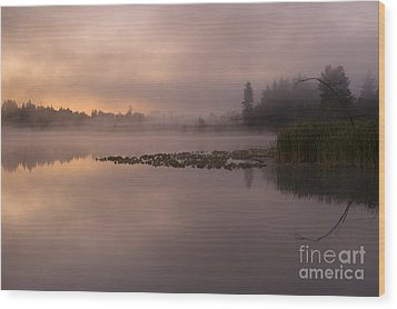 Lake Marsh Wood Print