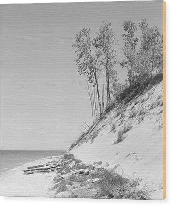 Lake Michigan Dunes Wood Print by Richard Singleton