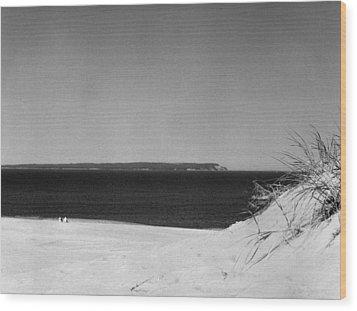 Lake Michigan Shoreline Manitoulin Island Wood Print by Richard Singleton