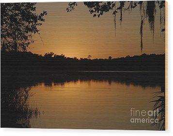 Lake Reflections Wood Print by David Lee Thompson