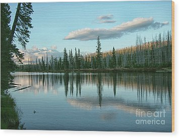 Lake Reflections Wood Print by Myrna Bradshaw