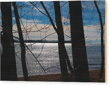 Wood Print featuring the photograph Lake Romance by Valentino Visentini