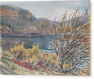 Lake Roosevelt Wood Print