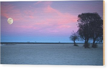 Lake Shore Evening Wood Print by Donald Schwartz