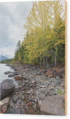 Wood Print featuring the photograph Lake Shore by Fran Riley