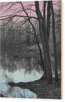 Lake Sunset Wood Print by Terry Cork