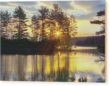 Lake Tiorati Golden Sunrise Wood Print