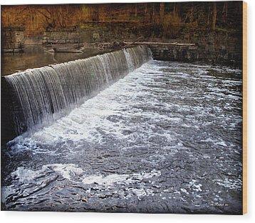 Lake To Lake Waterfall Wood Print by Joan  Minchak