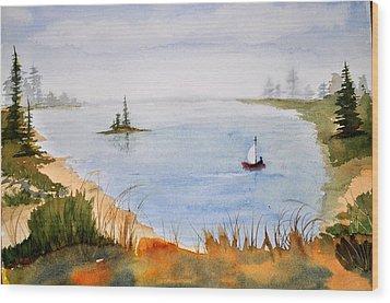 Lake View Wood Print by Brenda Douglas