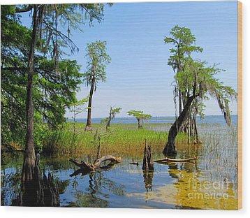 Lake Waccamaw Nc Wood Print