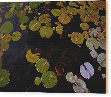 Wood Print featuring the painting Lake Washington Lilypad 8 by Thu Nguyen