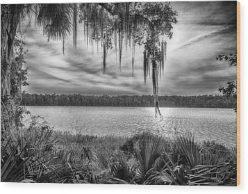Wood Print featuring the photograph Lake Wauberg   by Howard Salmon