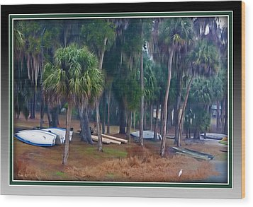Lake Wauburg Rain Wood Print