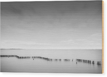 Lake Wellington Wood Print by Mihai Florea