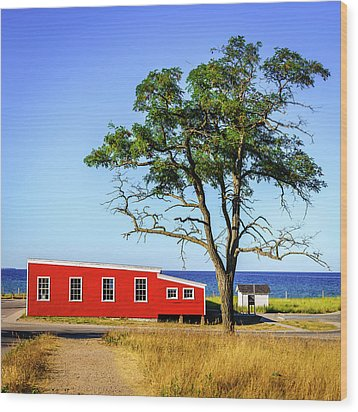 Wood Print featuring the photograph Lakefront In Glen Arbor by Alexey Stiop