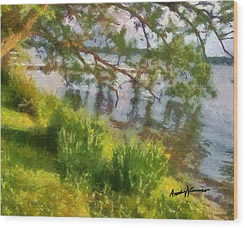 Lakeshore Wood Print by Anthony Caruso
