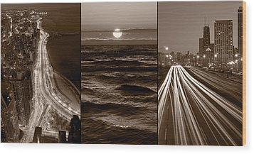 Lakeshore Chicago Wood Print by Steve Gadomski