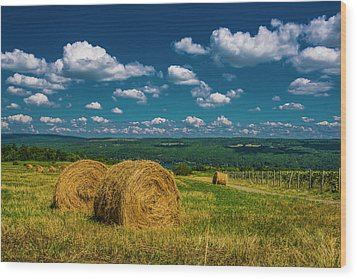 Lakeside Hayfield I Wood Print by Steven Ainsworth