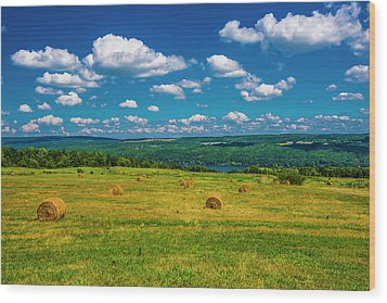 Wood Print featuring the photograph Lakeside Hayfield II by Steven Ainsworth