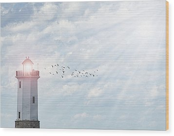 Wood Print featuring the photograph Lakeside Park Lighthouse by Joel Witmeyer