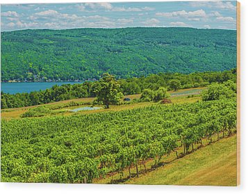 Lakeside Vineyard I Wood Print by Steven Ainsworth