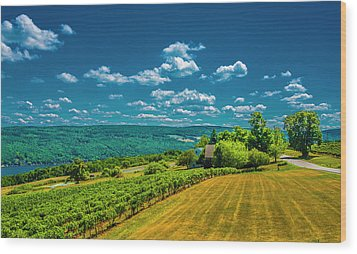 Wood Print featuring the photograph Lakeside Vineyard II by Steven Ainsworth