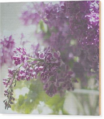 Lalac Bokeh Wood Print by Rebecca Cozart