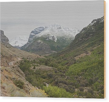 Wood Print featuring the photograph Lamoille Canyon by Daniel Hebard