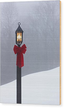 Lamppost In Snow Wood Print by Will and Deni McIntyre