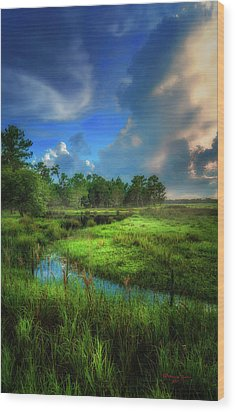 Wood Print featuring the photograph Land Of Milk And Honey by Marvin Spates