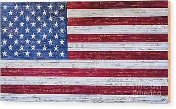 Land Of The Free Wood Print by David Millenheft