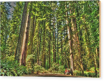 Land Of The Giants Wood Print