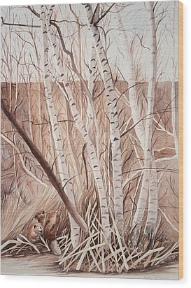 Land Of The Silver Birch Wood Print