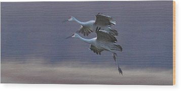 Wood Print featuring the photograph Landing Gear Down by Shari Jardina