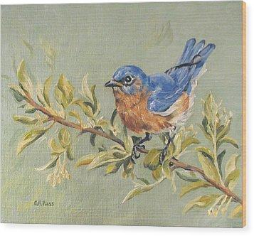 Landing In Honeysuckle Wood Print by Cheryl Pass
