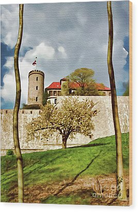 Landmark Sparrenburg Castle Wood Print