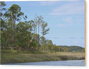 Wood Print featuring the photograph Landscape And Blue Sky by Carol  Bradley