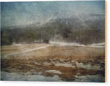 Landscape From Norway Wood Print