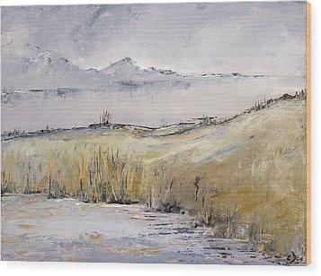 Landscape In Gray Wood Print by Carolyn Doe