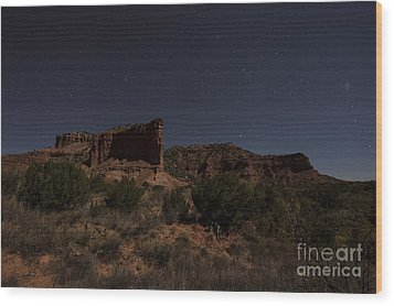 Wood Print featuring the photograph Landscape In The Moonlight by Melany Sarafis